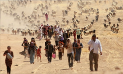 migranti-1137163